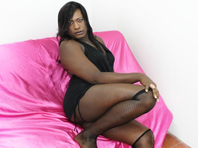 Picture of the sexy profile of SexyCaramelTS, for a very hot webcam live show !